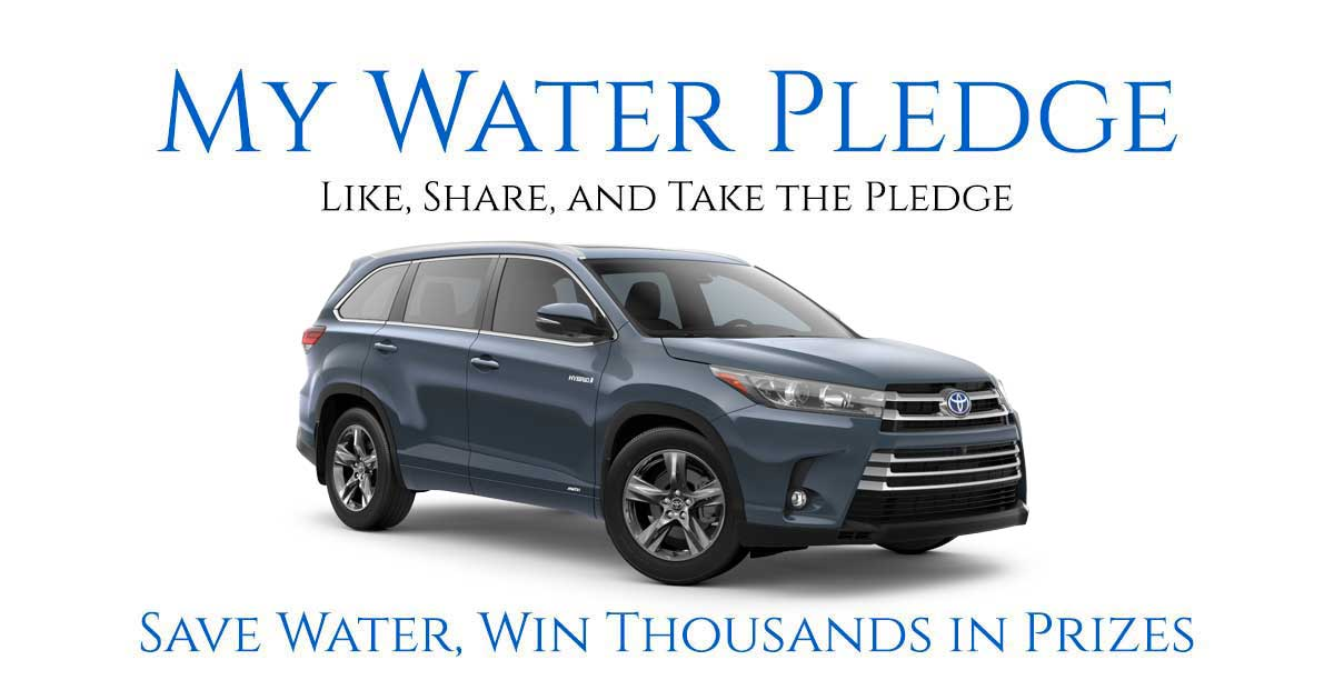 My Water Pledge - National Campaign 2019
